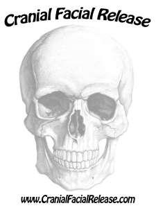 cranial-facial